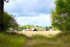 new house  and three barns
